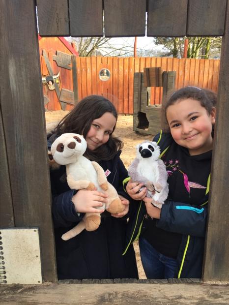 Zoo_Lemuren-05